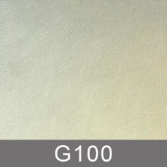 g100-n