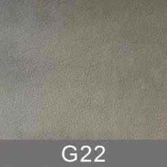 g22-n