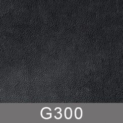 g300-n