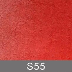 s55-n
